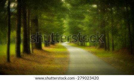 The road is symbolic of the path of ones life. Soft focus was used to create a more artistic feel and ethereal feel. Taken with the Lensbaby Velvet 56 - stock photo