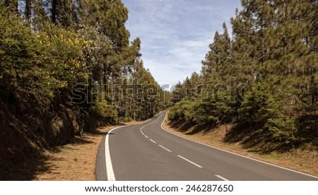 The road on  Tenerife island, Canary islands, Spain  - stock photo