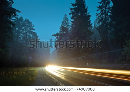 The road through the gloomy forest - stock photo