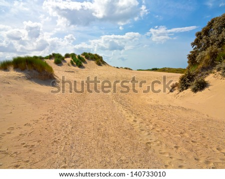 The road to the dunes. Seascape.
