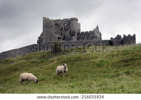 The Rock of Cashel in a gloomy day. With sheeps. - stock photo