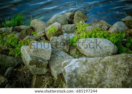 The rocks near the water on the shore of a forest river