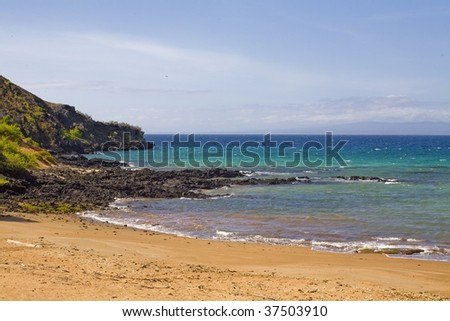The rocky beach in the Galapagos Islands - stock photo