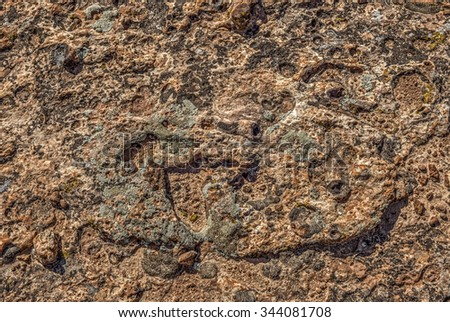 The rocky surface in Canyonlands National Park - stock photo