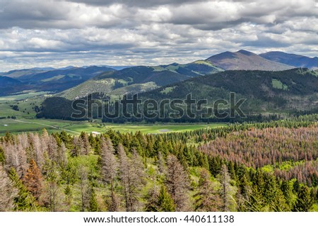 The rolling pine forested mountains of Montana roll south from Helena.