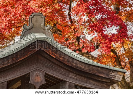 The roof of a small shrine against a background of autumn leaves at Arashiyama, on the western outskirts of Kyoto, Japan.