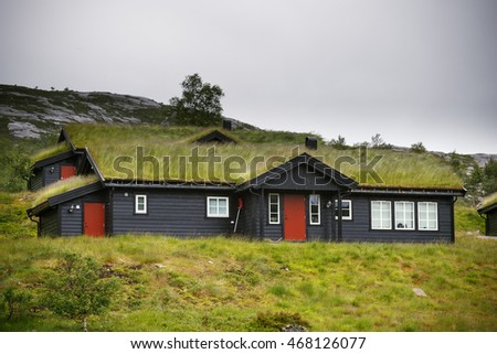 The roof of an house covered by green grass in Norway. This practice is typical for scandinavian region.