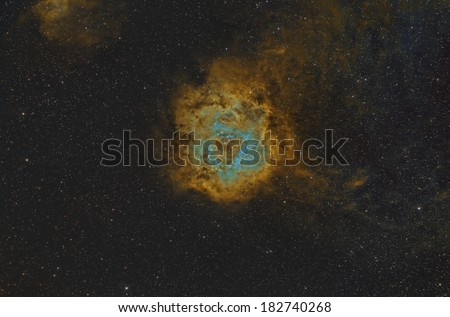 The Rosette Nebula Imaged in the Hubble Space Palette