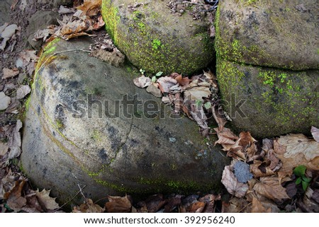 the round coastal stones covered with an emerald moss