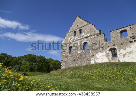 The ruins of the old castle Wisingsborg in Sweden