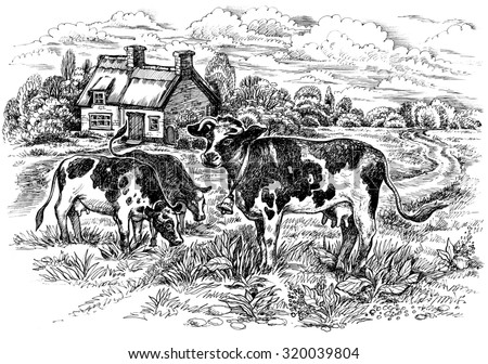 The rural landscape with cows. Graphic hand drawn illustration.  - stock photo