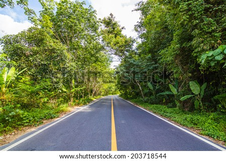 The rural paved road in the forest, road in southern of Thailand - stock photo