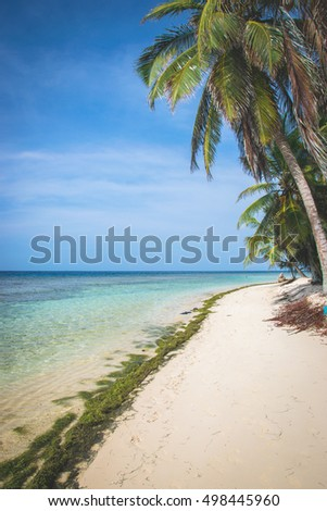 The San Blas Islands in Panama. Isla Iguana
