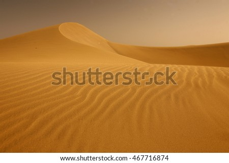 the sand Dunes at the Playa des Ingles in Maspalomas on Gran canary on the canary islands of spain