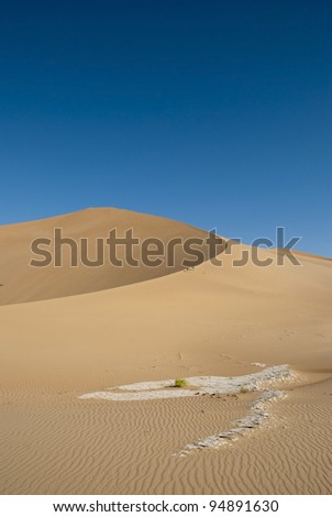 The sandy desert in the west Oman