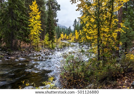 The scenic Chewuch River by the falls creek campground near Winthrop, Washington.