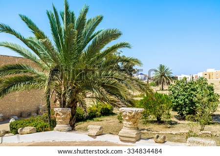 The scenic garden with the capitals of the ancient columns in the courtyard of the archaeological museum of El Jem, Tunisia. - stock photo