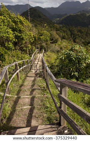 The scenic Tet Paul Nature Trail in St. Lucia is a popular attraction. - stock photo