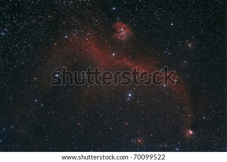 The Seagull Nebula