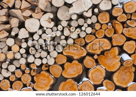The section of the firewood logs stacked up on top of each other in a pile - stock photo