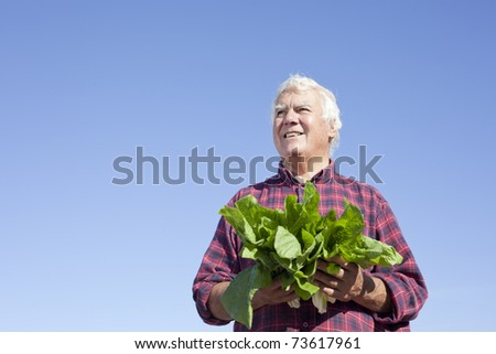 The senior man holding vegetable looking into far end with smile. - stock photo