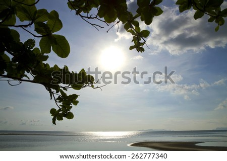 The shadow of a tree, with a view out to sea during sunset. on Koh Samui at sunset, Nathon,Surat Thani - stock photo