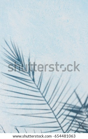 The shadow of the palm leaf on a blue and white background