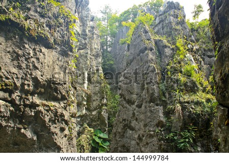 The sharp peaks of the mountains - the Stone Forest.