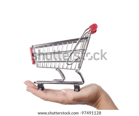 The shopping cart in female hands isolated - stock photo