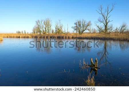 The shore of a lake under a blue sky in winter - stock photo