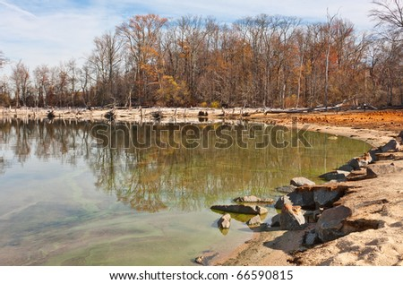 The shoreline around a lake with many fallen dead trees in front of living trees still standing - stock photo