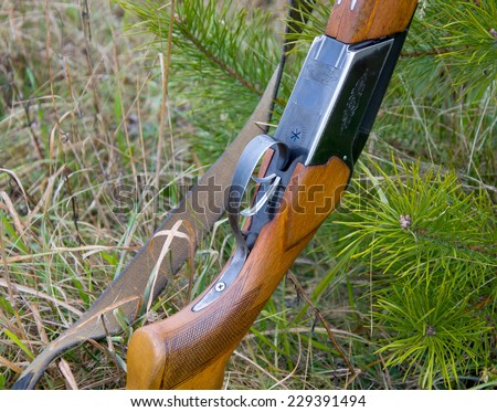 The shotgun is a fir  tree: the receiver box, butt, strap, forearm - stock photo