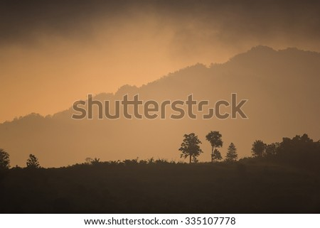 The silhouette of tree and mountain at sunrise