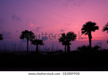 The Silhouette palm trees  in sky background.