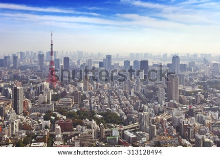 The skyline of Tokyo, Japan with the Tokyo Tower photographed from above. - stock photo