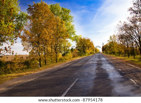 The small asphalted rural road (autumn season)