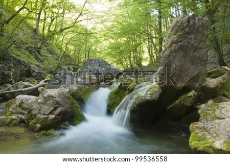 The small picturesque gorge in which the river, the wood with green leaves flows. Spring.