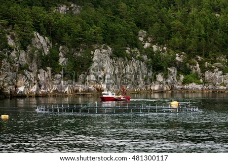 The small ship working on cultivation of fish in a salmon farming in fjords, Norway