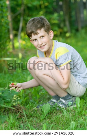 The smile boy harvests ripe strawberry in summer park