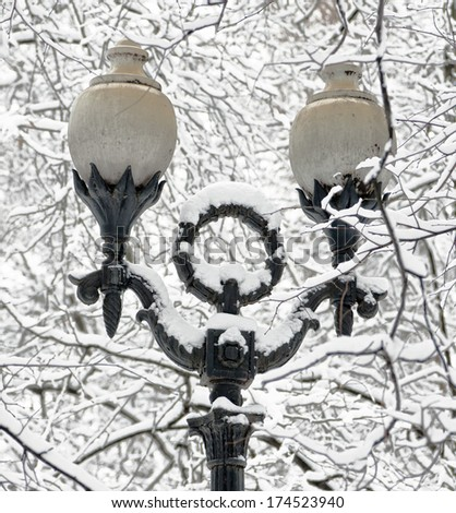 The snow-covered branch of a tree and lantern in winter park Izmailovo - Moscow, Russia - stock photo