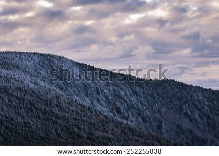 The snow-covered fir trees blanket the Roan Highlands in the Great Smoky Mountains National Park along the Appalachian Trail - stock photo