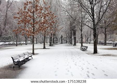 The snowfall in Boston - stock photo