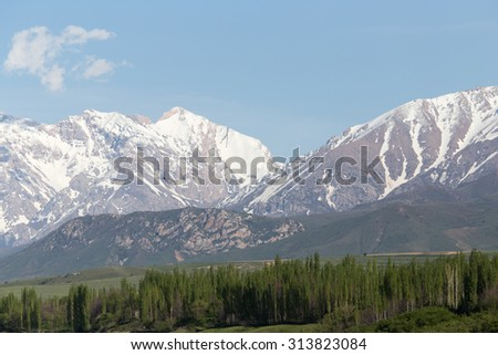 the snowy peaks of the Tien Shan Mountains. Kazakhstan
