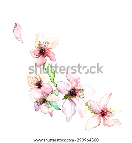 the spring branch watercolor isolated on the white background
