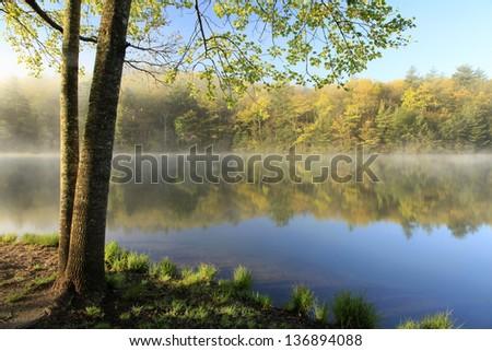 The Springtime Shoreline of a Foggy Mountain Lake at Sunrise - stock photo