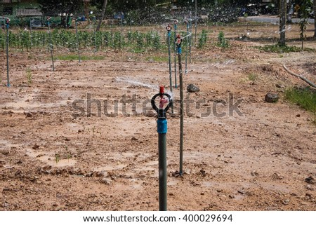 the sprinkler is working. - stock photo