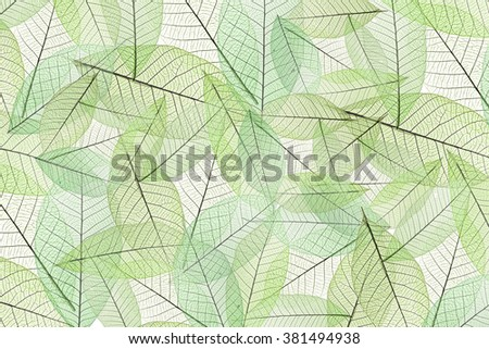 The stack of leaves.By way of many stacked layers and used filter color for green tone. - stock photo