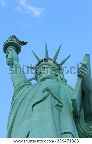 The Statue of Liberty,America,American Symbol,United states,New York,Las Vegas,Guam,Paris