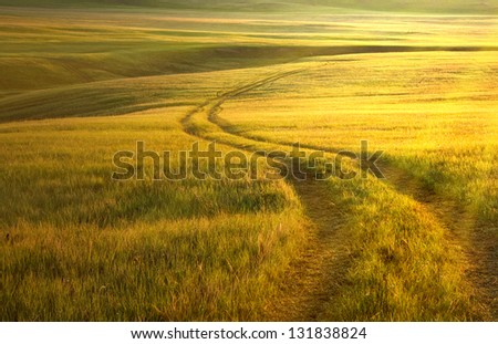 The steppe in the twilight of sukhodyashchy afar the road. - stock photo
