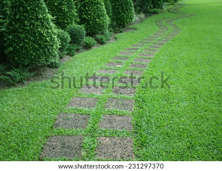 The stone block walk path in the garden with green grass
